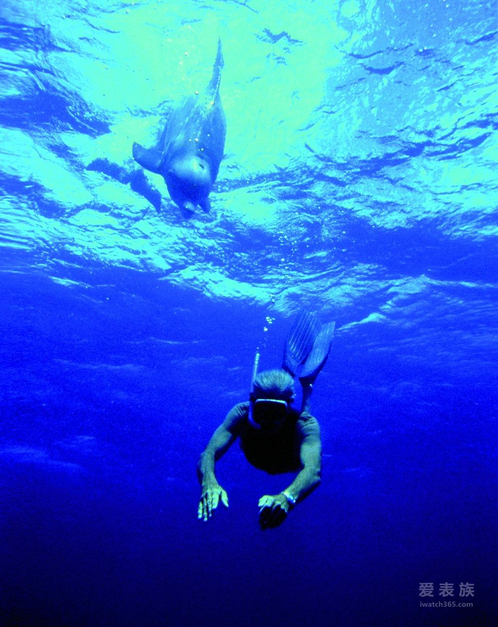 欧米茄海洋探险历程 - 新闻 - 爱表族-全国领先的垂直
