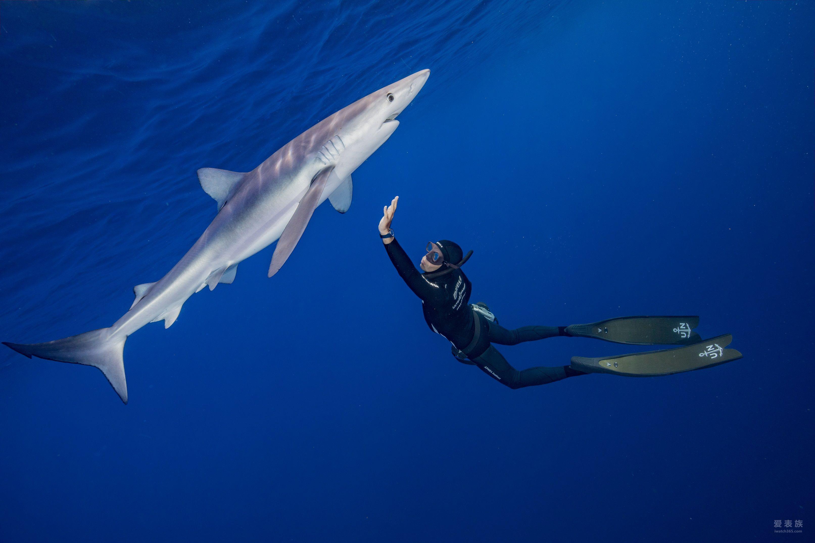 惊涛拍岸 雅典表于摩纳哥游艇展发布 全新Diver Chronometer天文台潜水表系列