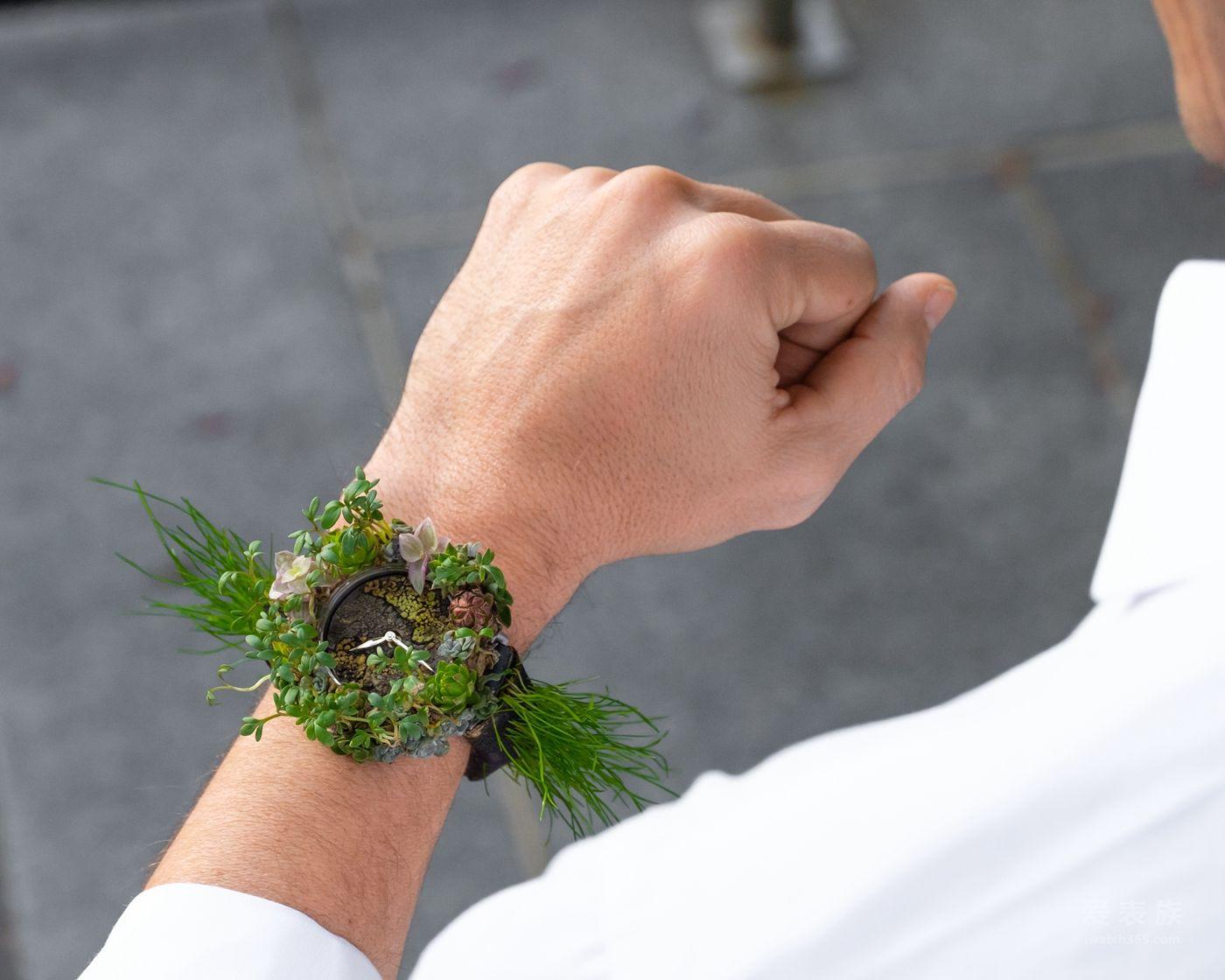 亨利慕时,绿化腕表